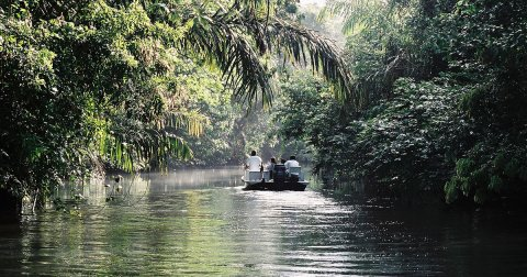 Tortuguero and Tropical Rainforest